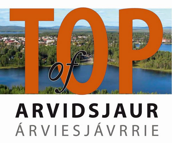 Top of Arvidsjaur bild